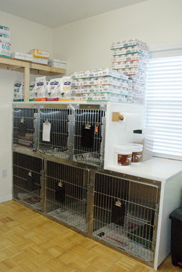 21 - cat kennel