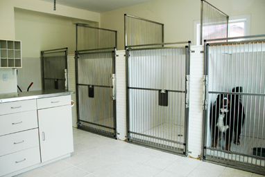20 - dog kennel