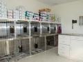 19 - dog kennel