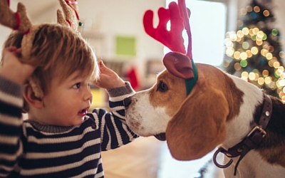 image for Do Pets Make Good Gifts?