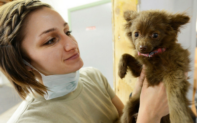 image for National Veterinary Technician Week